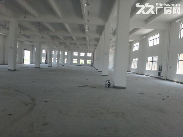 火炬大道边1楼1000方厂房7米大车进出方便-图(3)