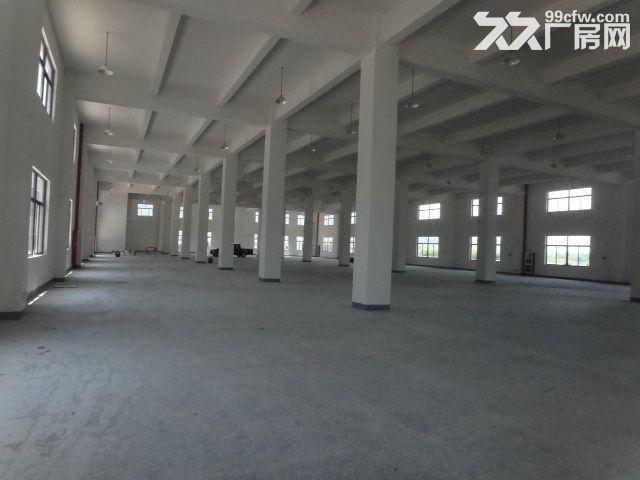 火炬大道边1楼1000方厂房7米大车进出方便-图(4)