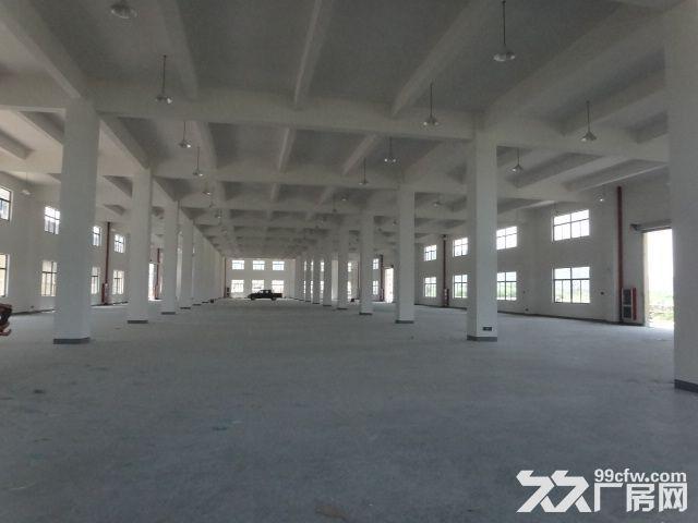 火炬大道边1楼1000方厂房7米大车进出方便-图(5)