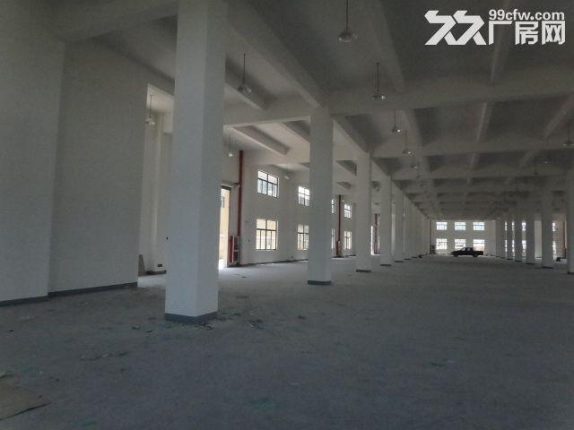 火炬大道边1楼1000方厂房7米大车进出方便-图(6)