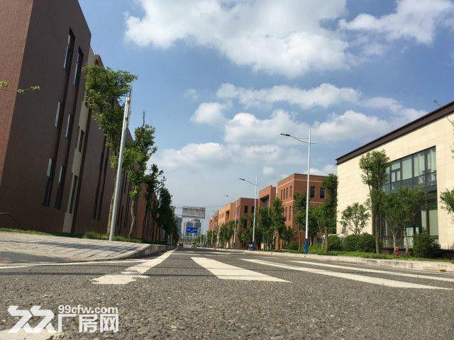 租售水土高新园500平米起标准厂房-图(3)