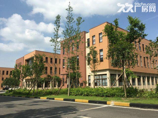 租售水土高新园500平米起标准厂房-图(4)