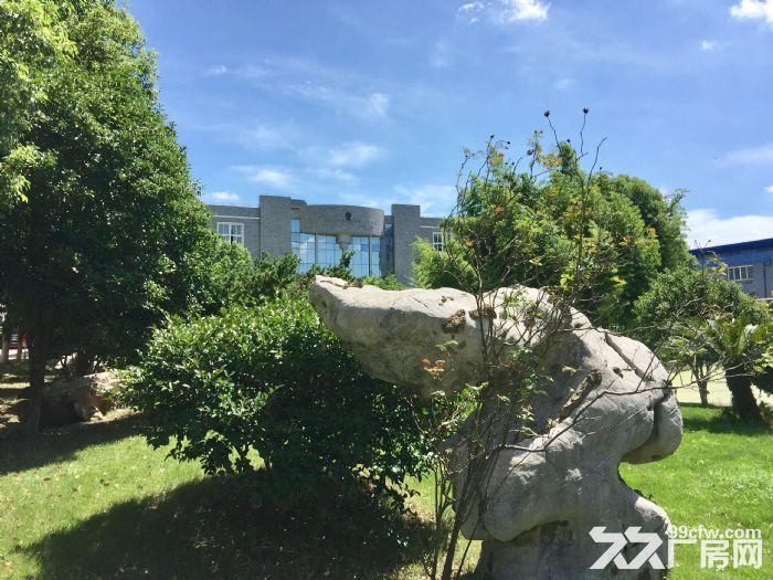 江北万达广场附近,花园式厂房,12000平,1200平,340平-图(1)