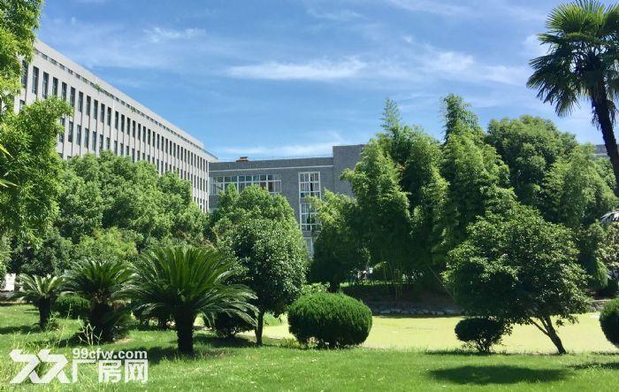 江北万达广场附近,花园式厂房,12000平,1200平,340平-图(3)