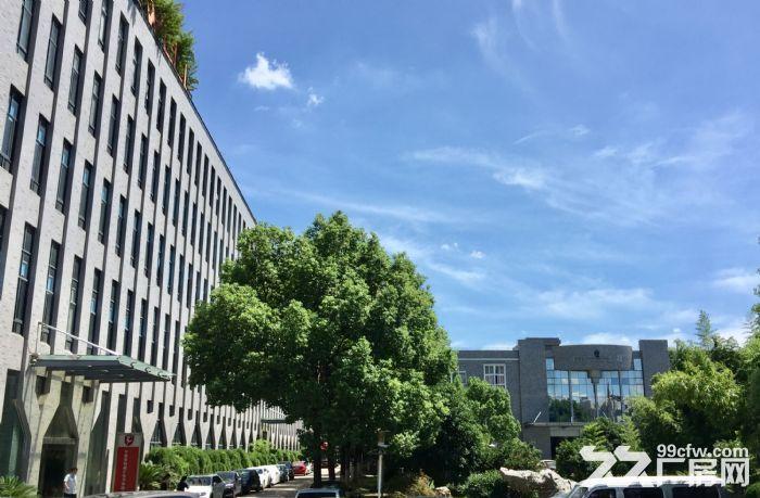 江北万达广场附近,花园式厂房,12000平,1200平,340平-图(4)