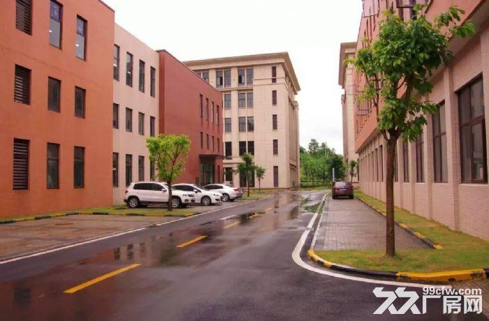 租售水土高新园500平米起标准厂房-图(5)