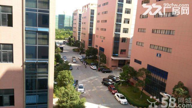 科技园形象、标准厂房出租、面积可分租-图(1)
