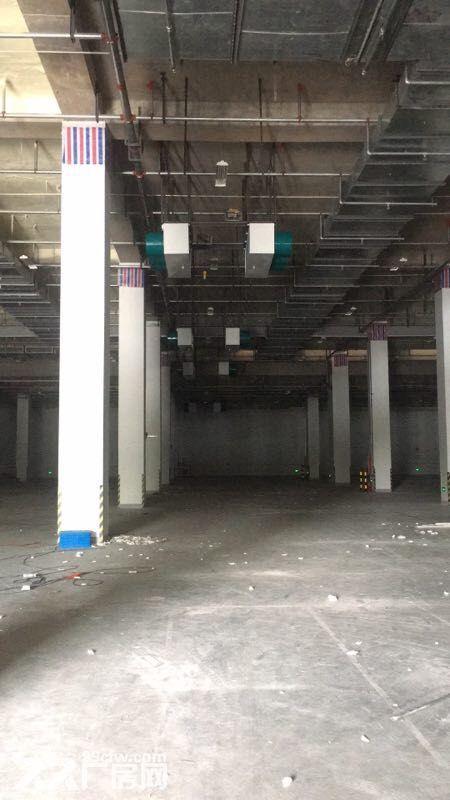 出租宝山恒温仓库有卸货平台有办公室有停车位-图(3)