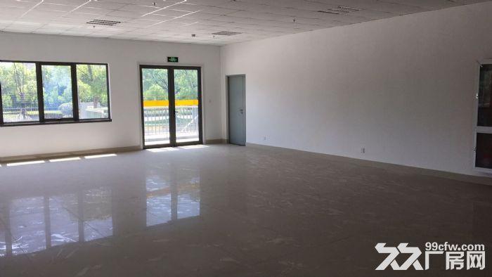 出租宝山恒温仓库有卸货平台有办公室有停车位-图(4)