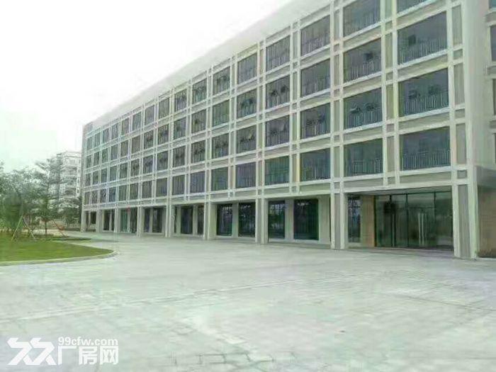 横栏永兴工业区风水宝地11920平方精装修标准厂房出租-图(3)