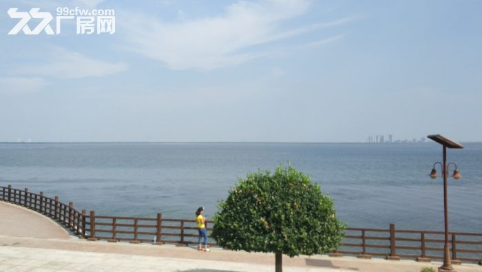 天津市静海区正规开发区土地出让-图(1)