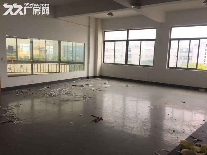 滨江600方厂房出租价格便宜淘宝仓储办公-图(1)