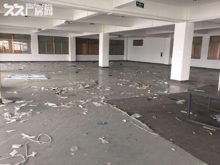 滨江600方厂房出租价格便宜淘宝仓储办公-图(3)