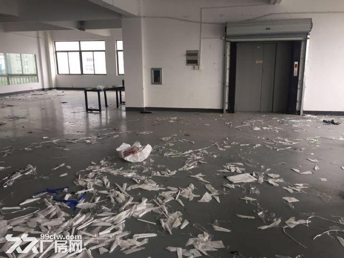 滨江600方厂房出租价格便宜淘宝仓储办公-图(5)