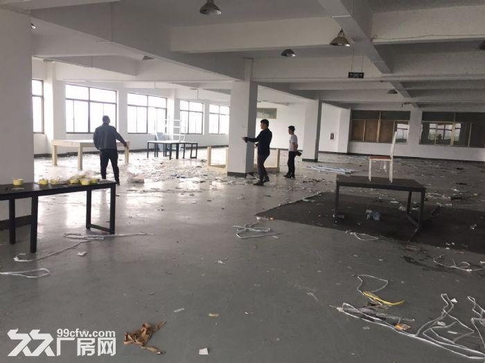 滨江600方厂房出租价格便宜淘宝仓储办公-图(6)