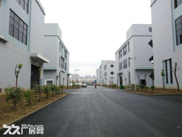 六安舒城7048平米全新框架结构厂房出租-图(1)