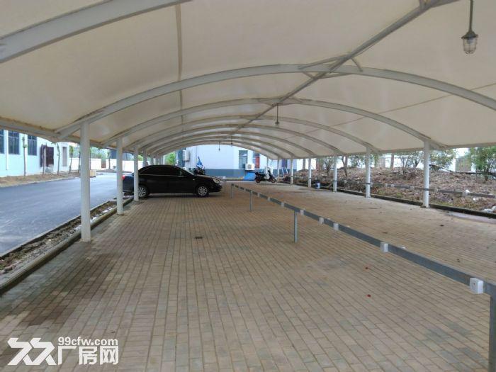 六安舒城7048平米全新框架结构厂房出租-图(6)