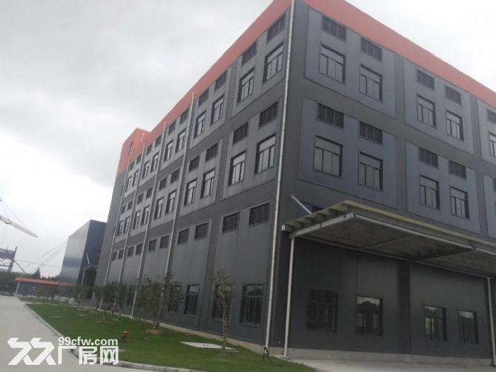 奉贤独门独院化工企业甲类厂房仓库出租-图(2)