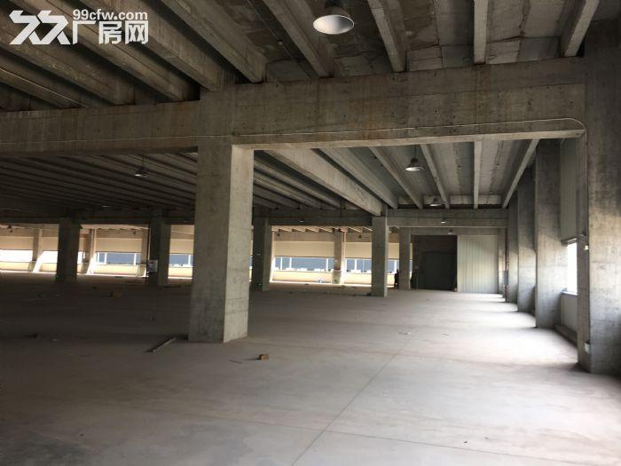 重庆地区厂房,仓库出租、代理招商-图(8)