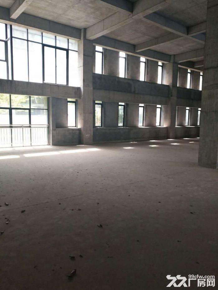 松江高端独栋厂房2137平出售-图(2)