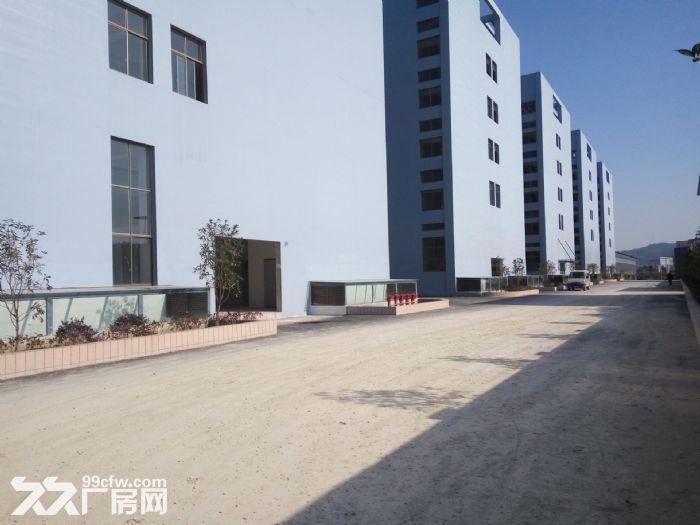 白云电商产业园还剩1栋框架厂房5122平米出租-图(3)