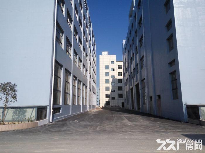 白云电商产业园还剩1栋框架厂房5122平米出租-图(5)