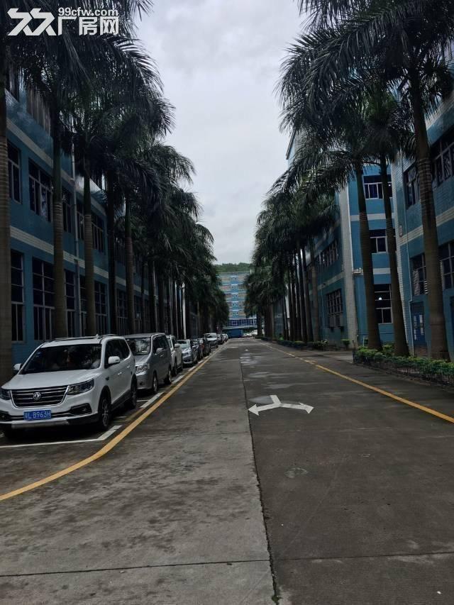 龙岗区宝龙开发区全新厂房出售,600平方起售,有红本-图(2)
