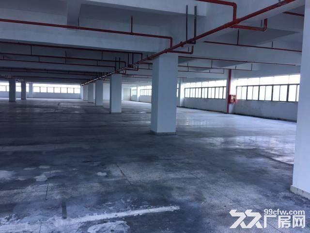 龙岗区宝龙开发区全新厂房出售,600平方起售,有红本-图(3)