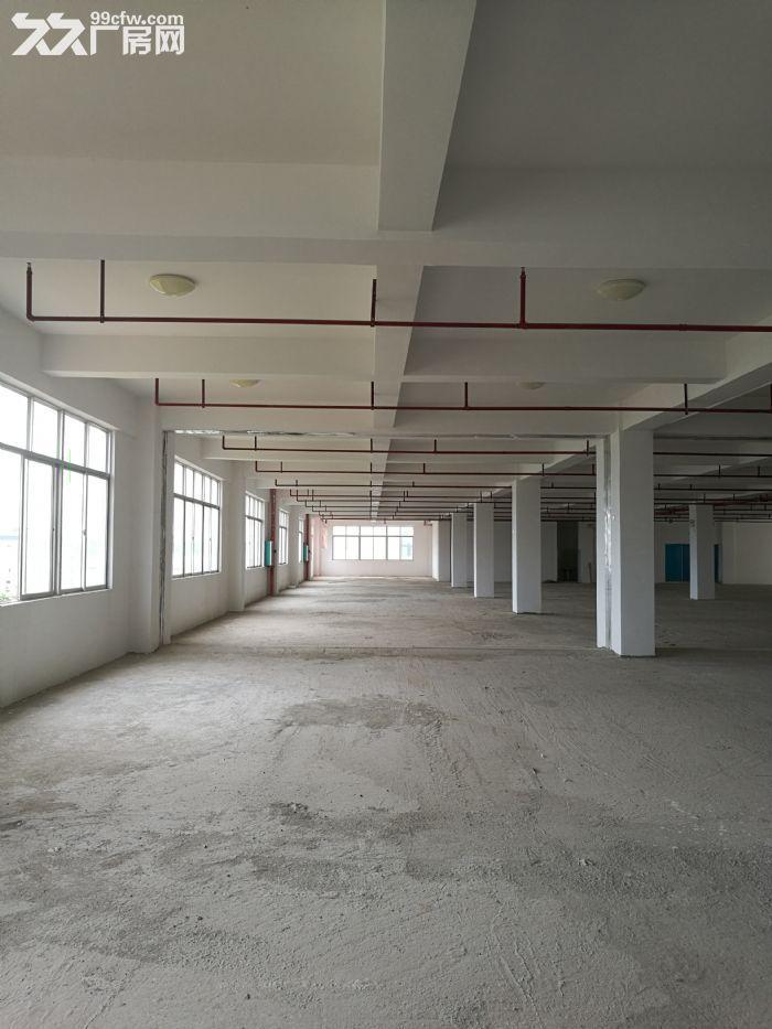 南宁江南(地铁口)(近机场)(近火车货运站)(50年独立产权)厂房仓库-图(3)