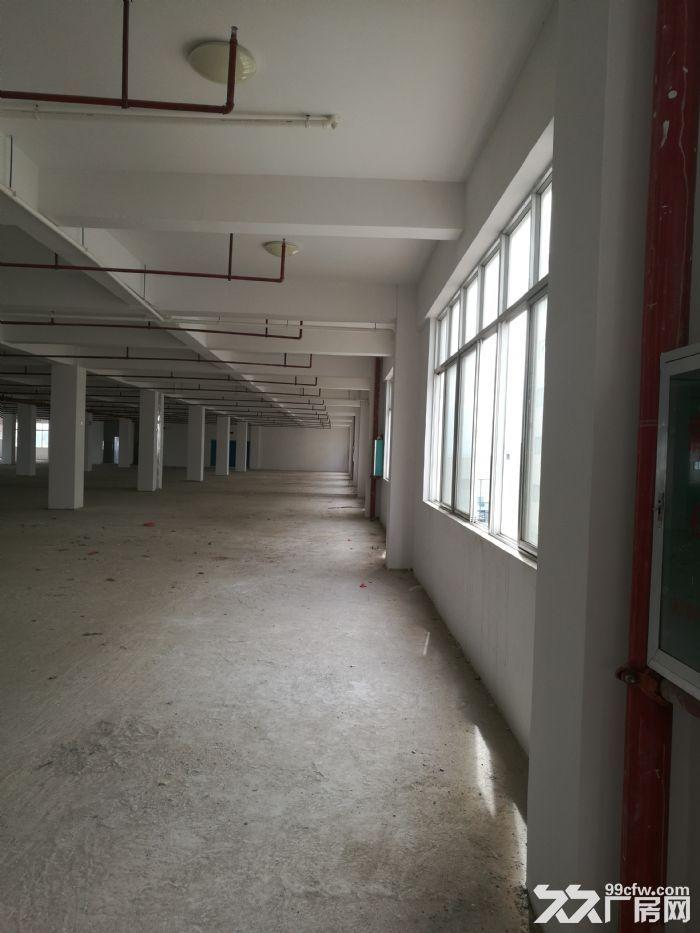 南宁江南(地铁口)(近机场)(近火车货运站)(50年独立产权)厂房仓库-图(5)