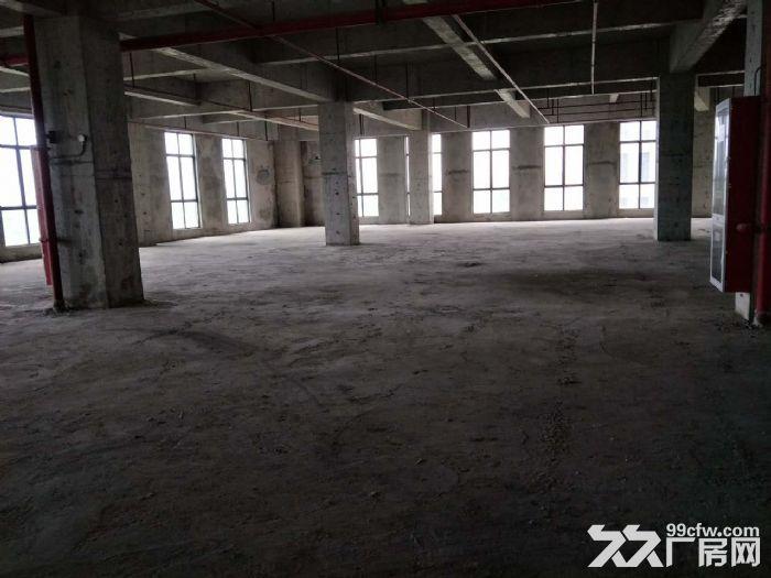 科技研发类厂房优选面积500平起近地铁8号线-图(4)