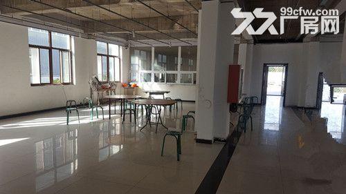 出去天津武清开发区7725平标准厂房、可注册环评-图(5)