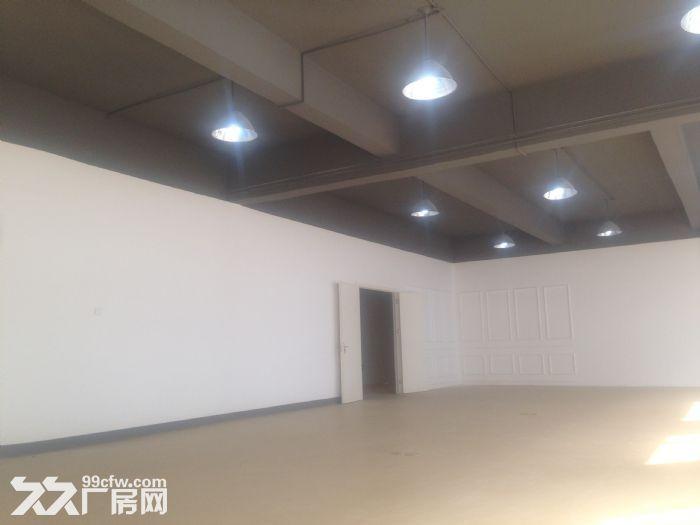电商园办公仓储一体3吨货梯厂房价格园区配套-图(3)