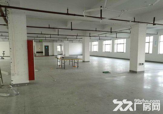 1400方厂房出租,仓库电商的理想之地-图(4)
