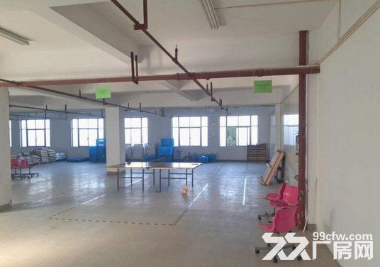 1400方厂房出租,仓库电商的理想之地-图(6)