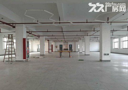 1400方厂房出租,仓库电商的理想之地-图(7)