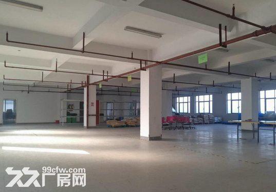 1400方厂房出租,仓库电商的理想之地-图(8)