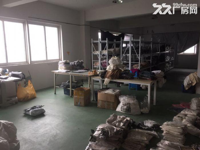 滨江长河板块600方,租办公文艺服装-图(3)