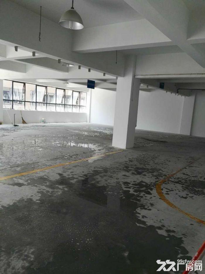 滨江核心200到300精装修,租办公电商摄影科技型客户-图(1)