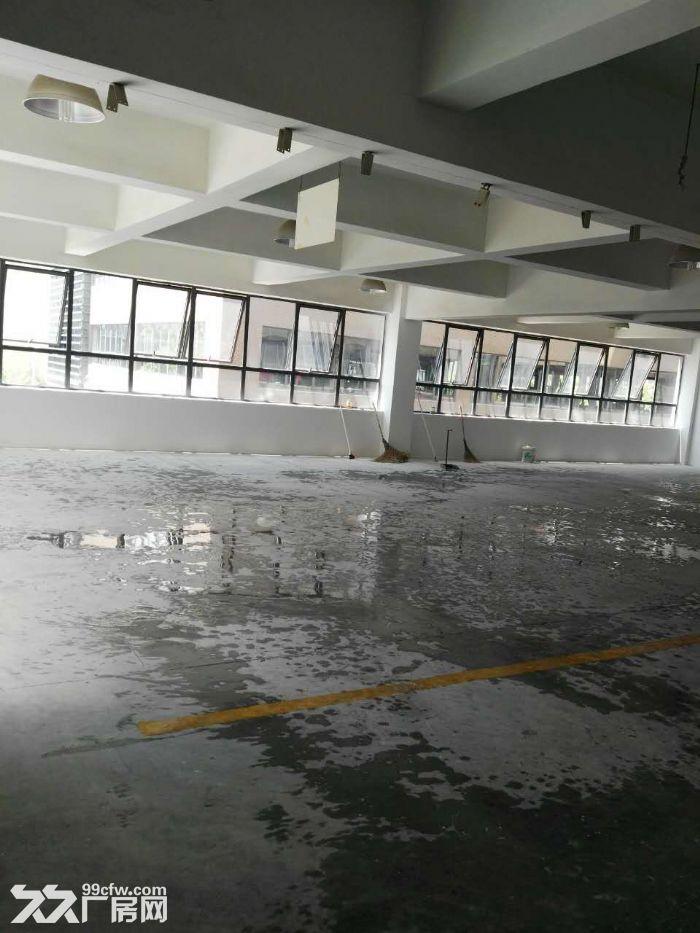 滨江核心200到300精装修,租办公电商摄影科技型客户-图(2)