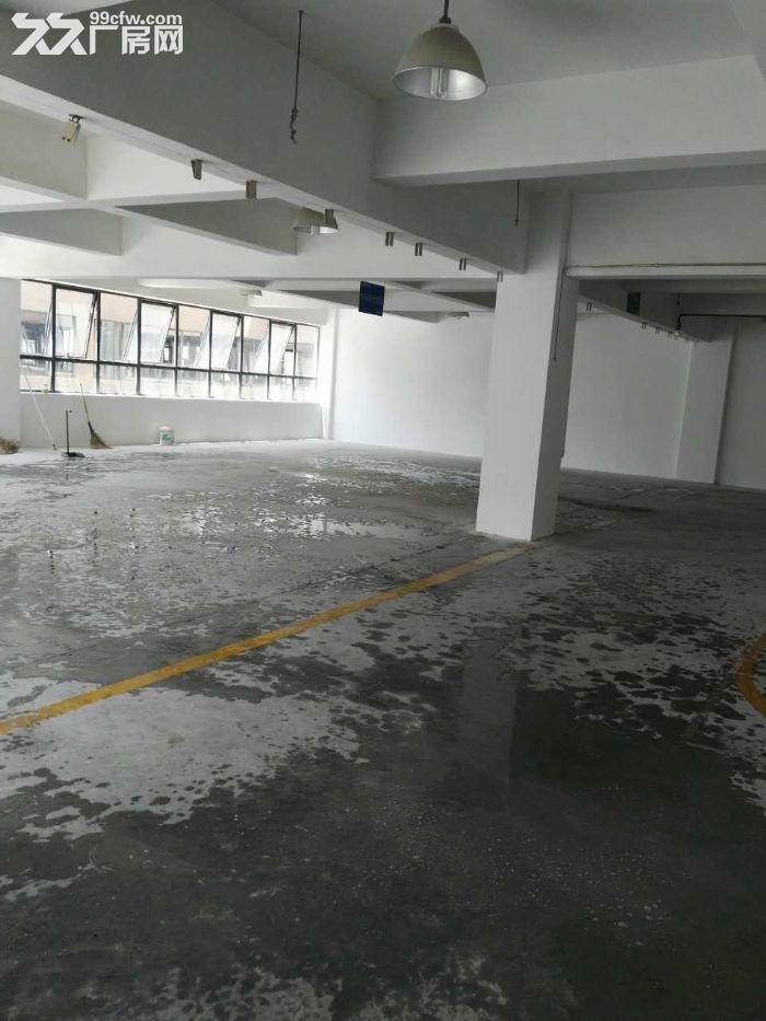滨江核心200到300精装修,租办公电商摄影科技型客户-图(3)