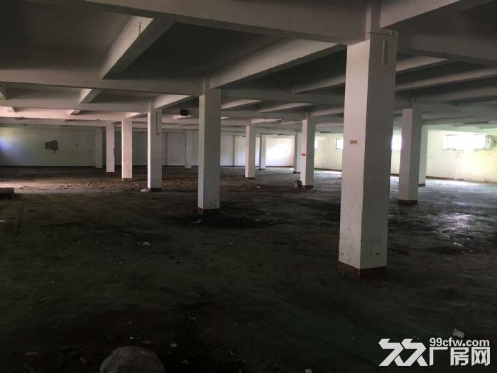 办公楼、仓库、厂房共30亩出租,价格面议!-图(4)