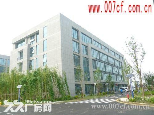 上海长兴岛厂房办公楼超低价急租,价格面议-图(3)