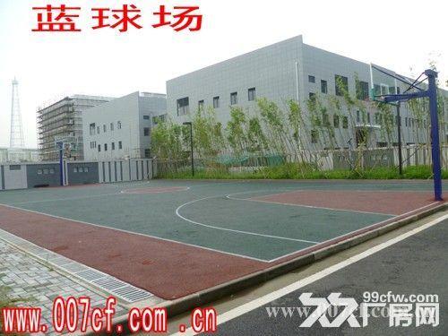 上海长兴岛厂房办公楼超低价急租,价格面议-图(4)