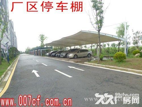 上海长兴岛厂房办公楼超低价急租,价格面议-图(5)
