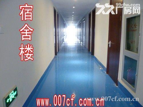 上海长兴岛厂房办公楼超低价急租,价格面议-图(7)