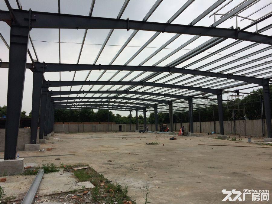 3000平方全新钢结构厂房出租-图(1)