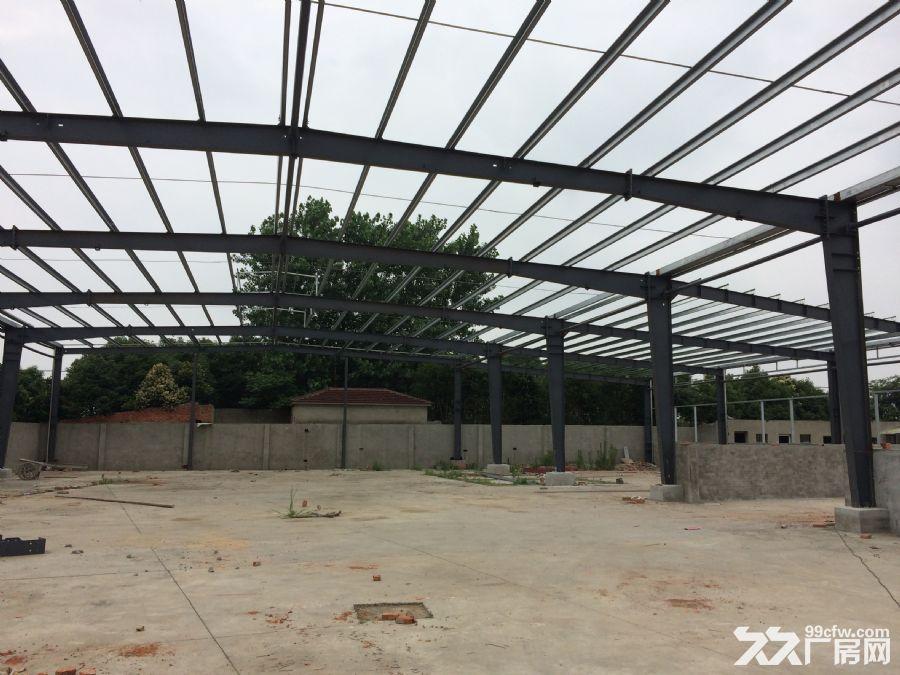 3000平方全新钢结构厂房出租-图(2)