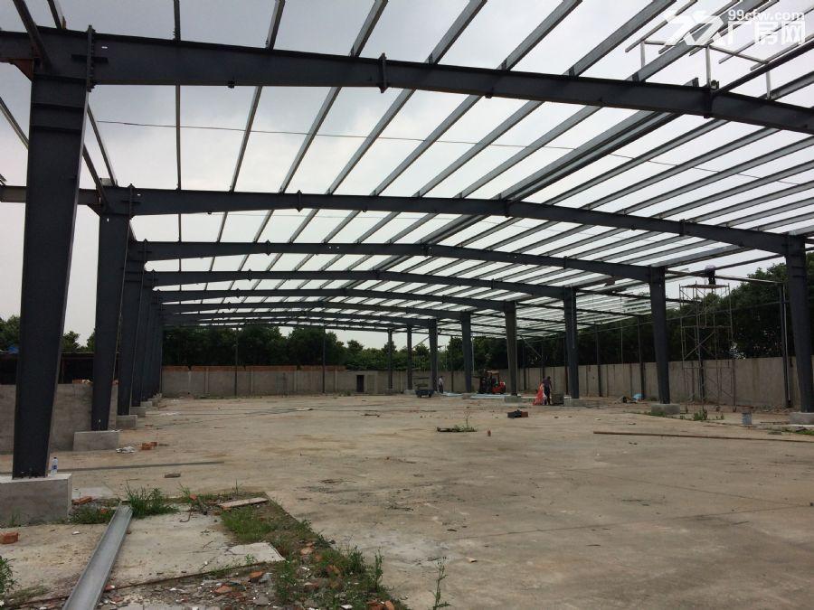 3000平方全新钢结构厂房出租-图(5)
