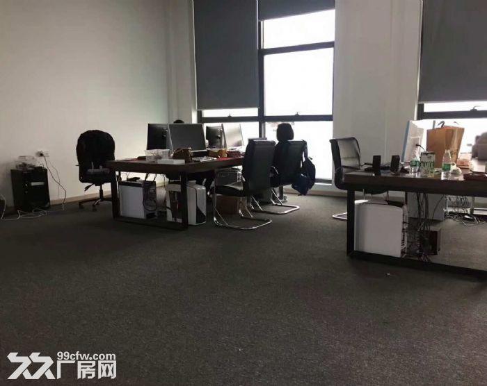 滨江摄影办公工作室,拎包看过来了-图(6)